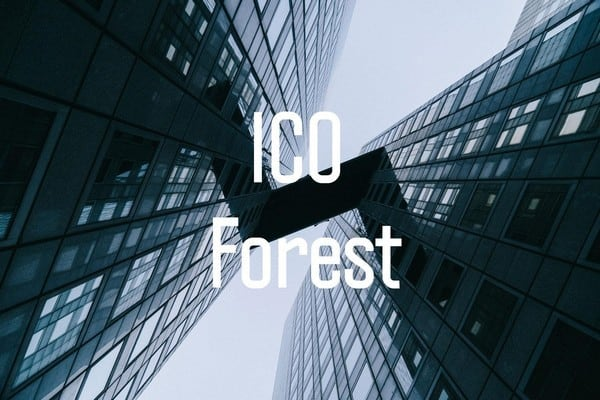10 Wege für die Bewertung von ICO-Investitionen (Initial Coin Offering)