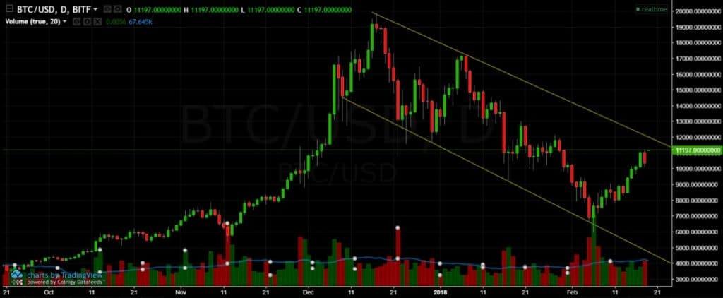 BTC Feb 19 Overview