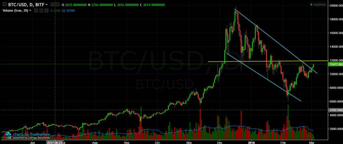 BTC 1 DAY March 3