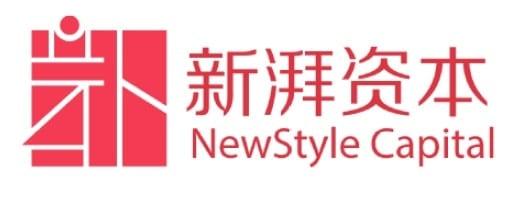 Newstyle capital logo