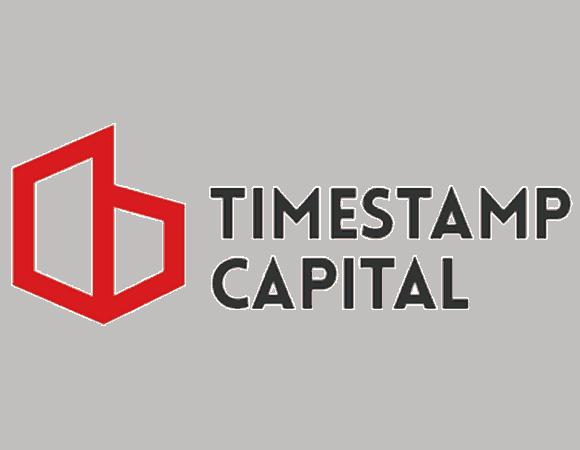 Timestamp logo