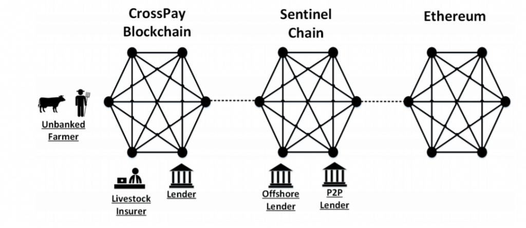 Sentinel Chain Ecosystem