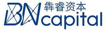 BN capital logo