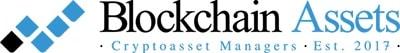 Blockchain assets logo