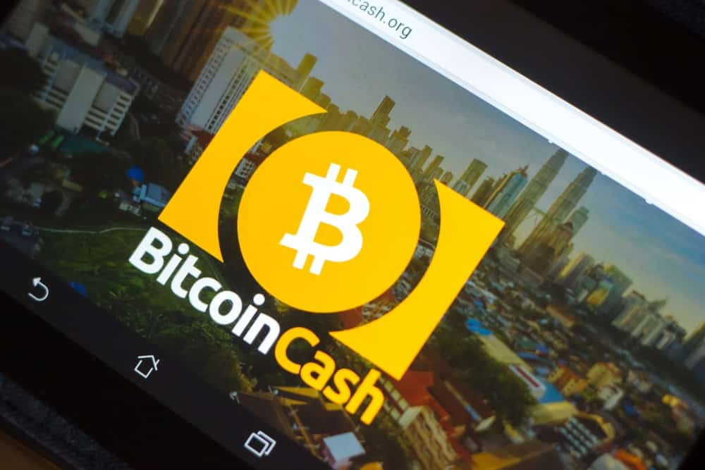 Bitcoin Cash Developer: If Something Isn't Done, BCH Will Cease to Exist