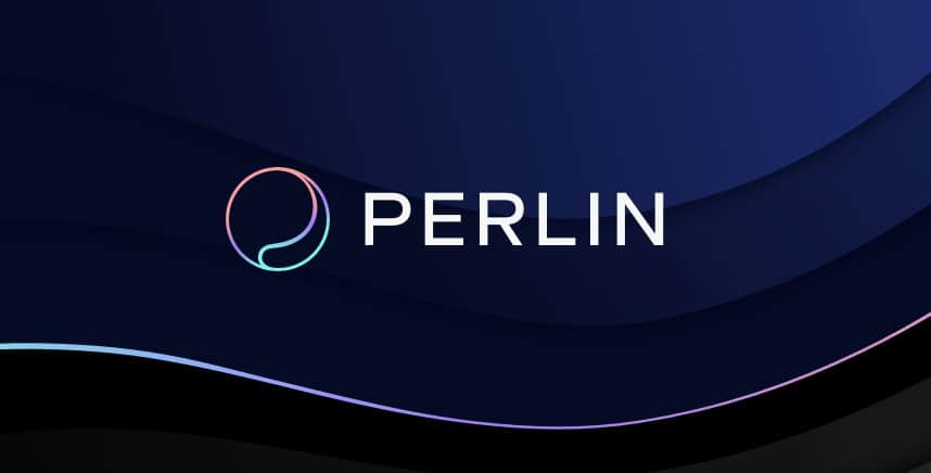Exclusive Interview: Perlin, the Upcoming Binance IEO, Plans to Create a Pseudo-UBI For Device Owners