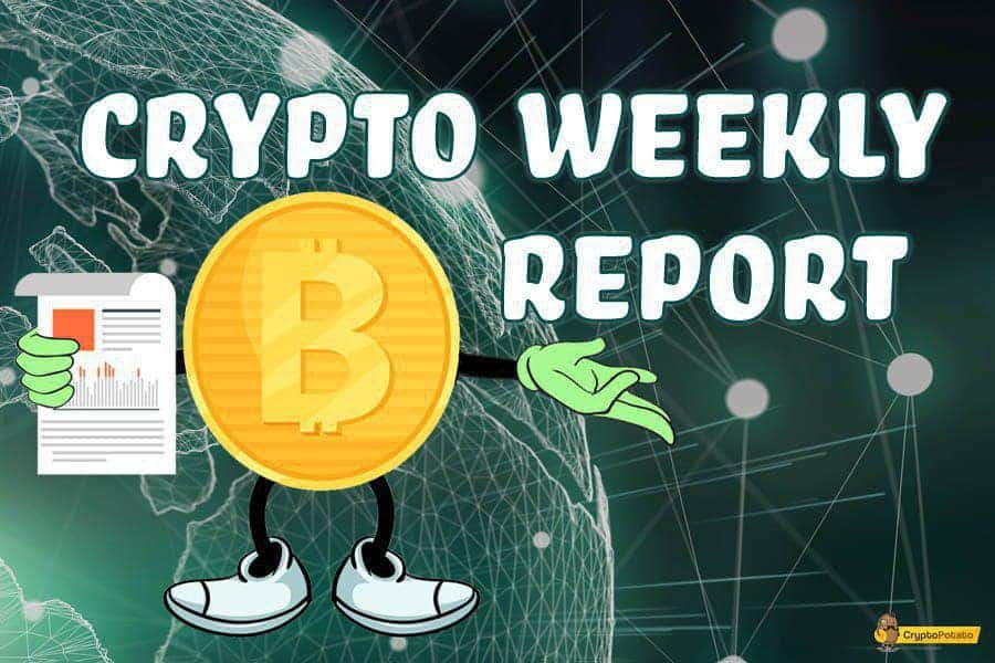 Bitcoin Retraces To $8000, Altcoins Follow & Bleed: Weekly Crypto Market Update