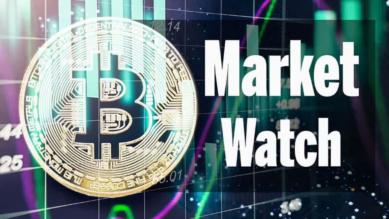 cryptocurrency altcoins market