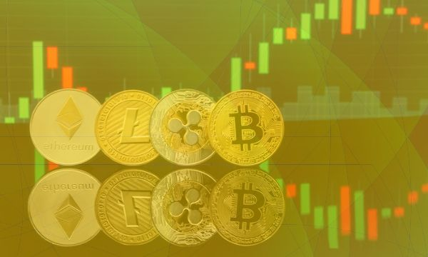 Not (Yet) Altseason: Majority Holds Bitcoin And Less Than 5 Altcoins, According To a Survey