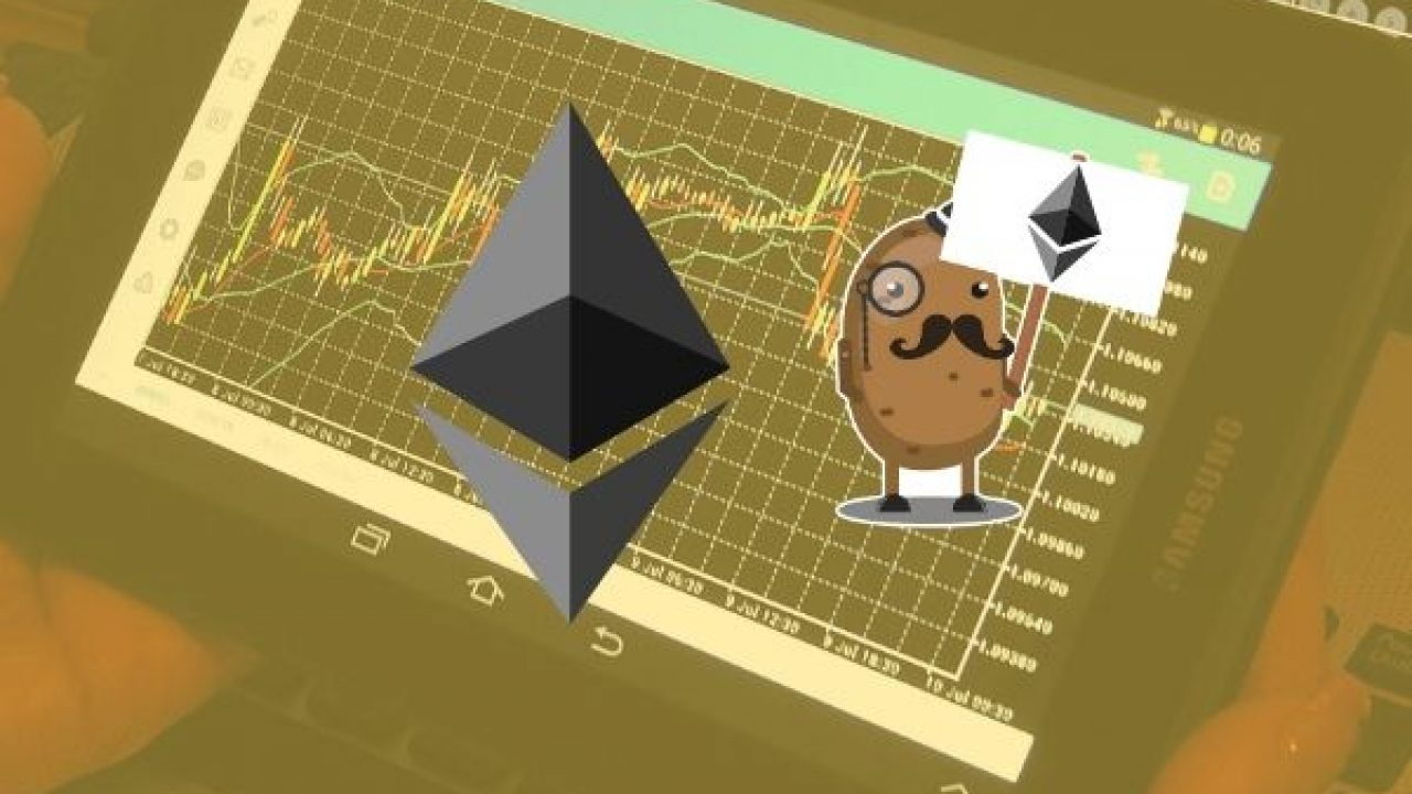 long term cryptocurrency analysis