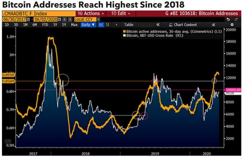 Bitcoin Addresses. Source: Bloomberg