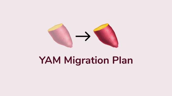 yam_finance