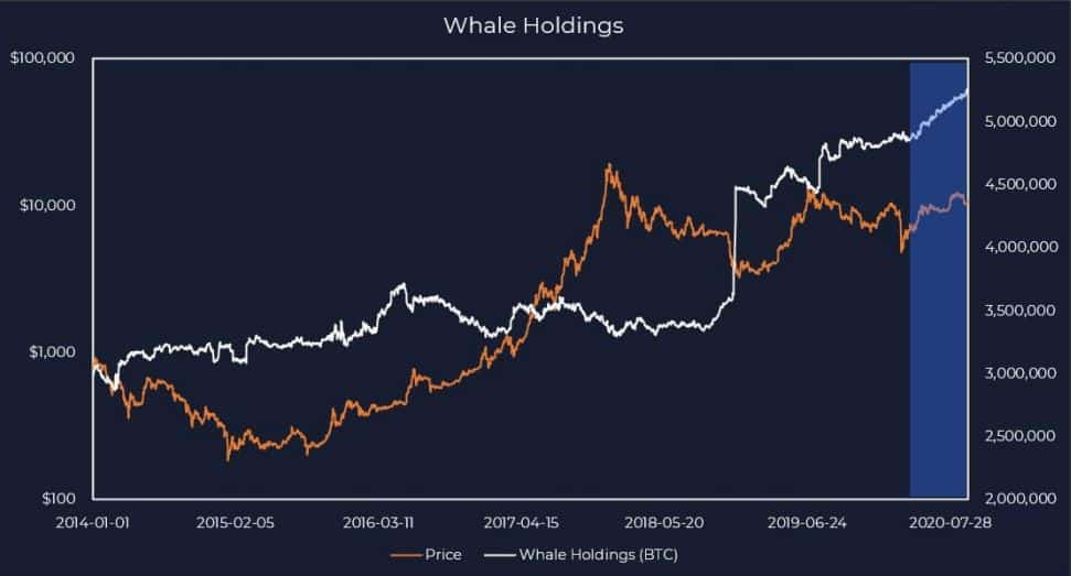 Bitcoin Whales HODLing. Source: DigitalDelphi