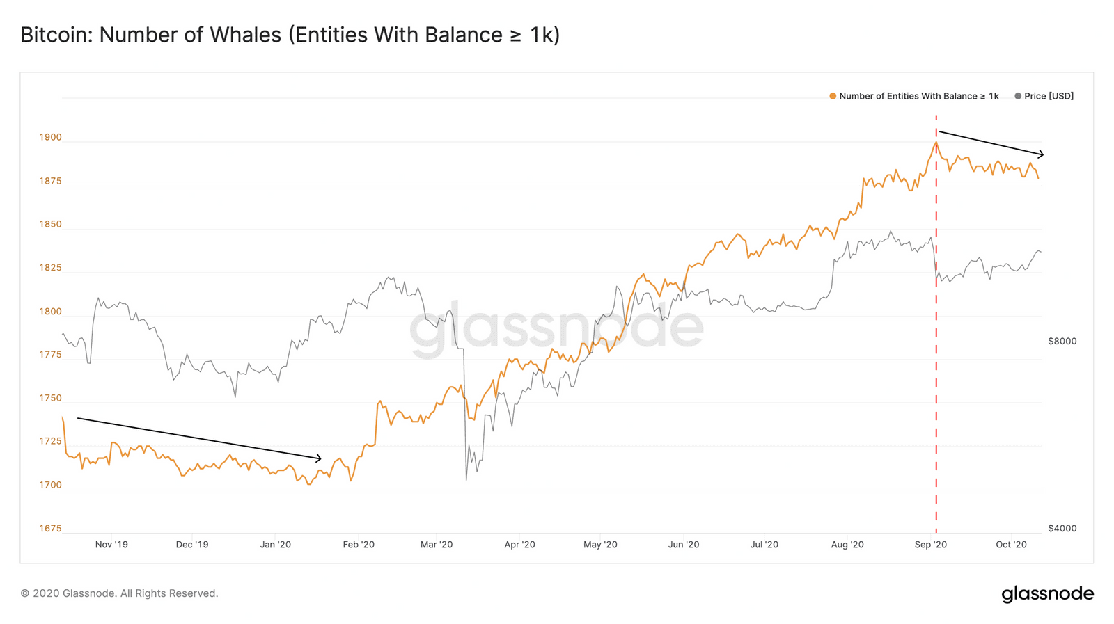 Bitcoin Whales Accumulation. Source: Glassnode