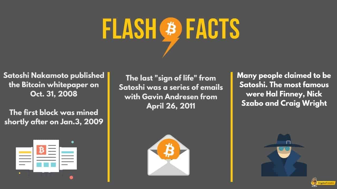 satoshi_infographic