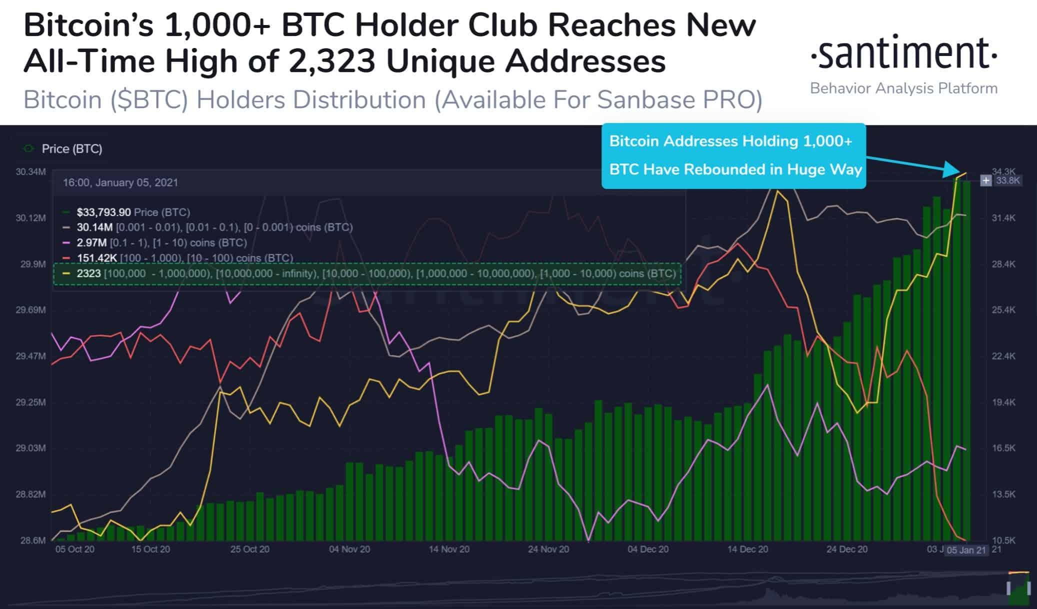 Bitcoin Whales. Source: Santiment