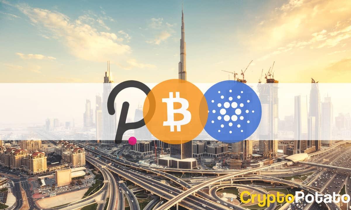 BitcoinPolkadotCardanoDubai