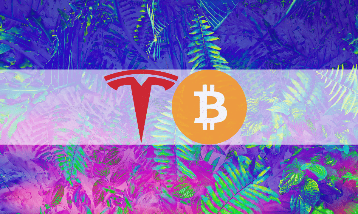 LSD-Induced Prank: The Reddit Post That Revealed Tesla's Bitcoin Buy Before it Became Public