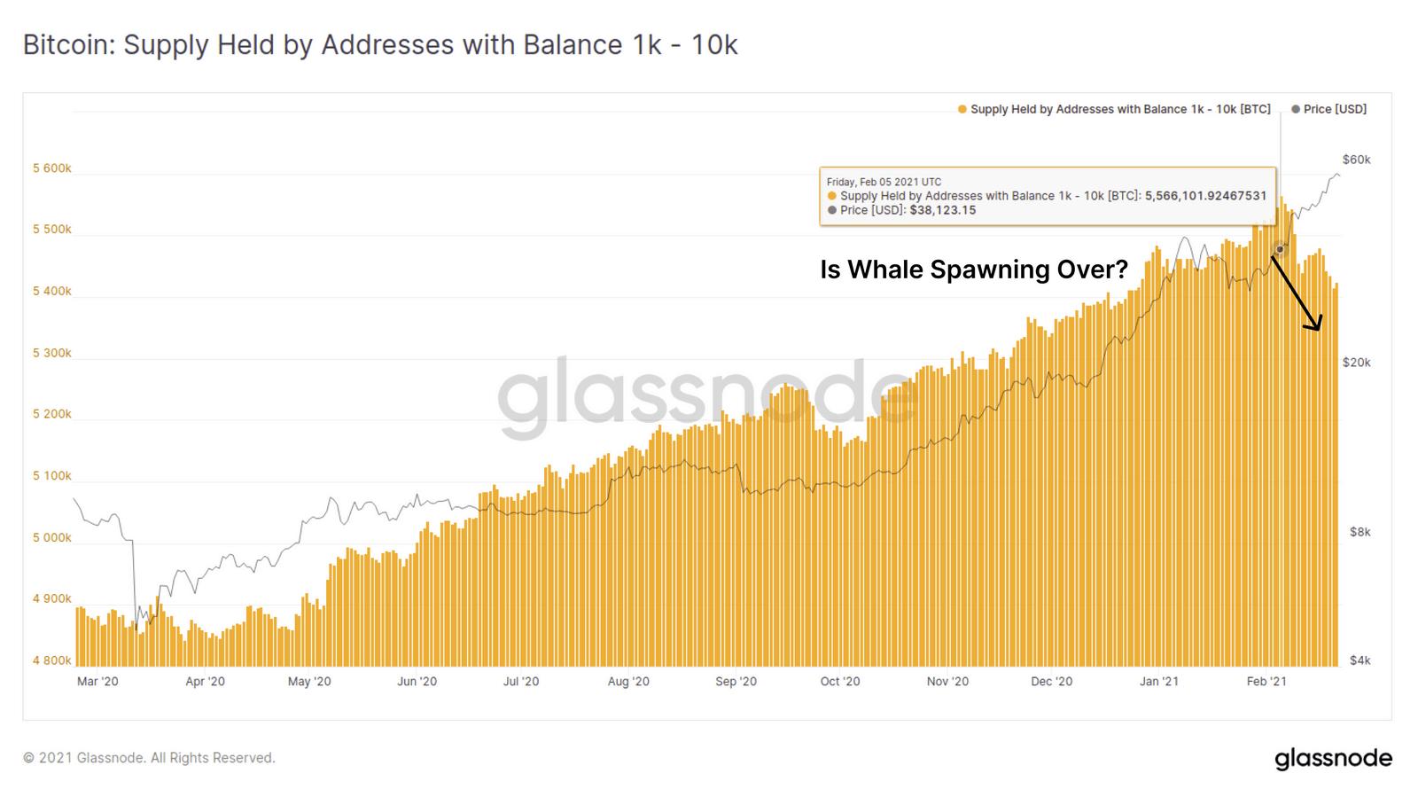 Bitcoin Whales Behavior 2020-2021. Source: Glassnode