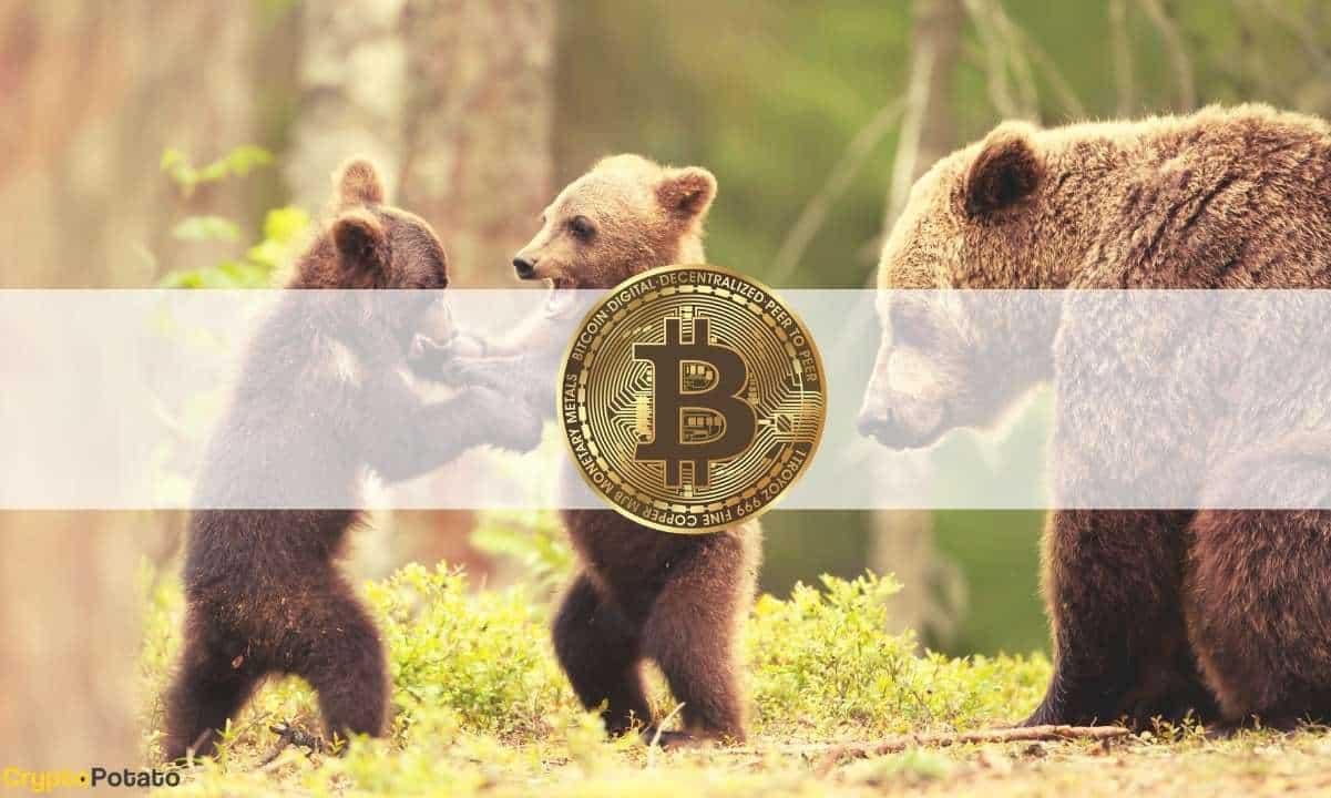 Bitcoin Evolution - Questo è un software di trading di truffe? OTTIENI LO SCOOP INTERNO!
