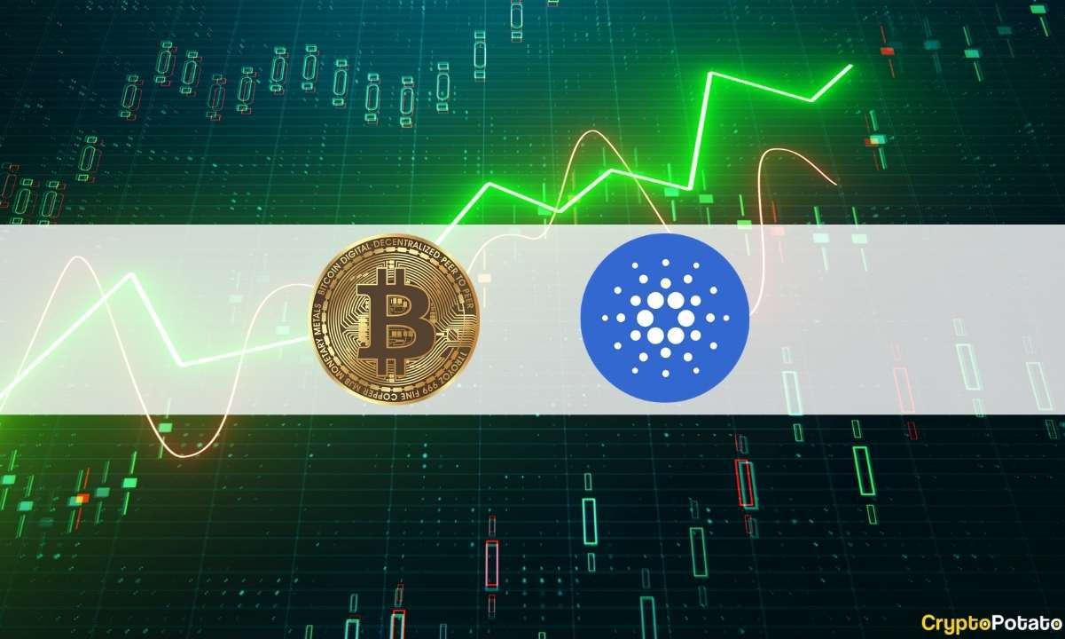 Bitcoin Reached 2% From ATH As Cardano (ADA) Now 4th Biggest Cryptocurrency