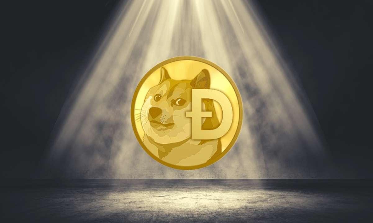 doge_spotlight_cover