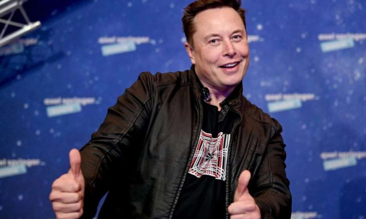 Elon Musk Says He Will Fully Support Dogecoin if Whales Sell Their Coins