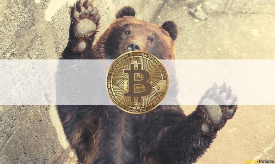 JPMorgan: Backwardation Points to a Bear Market for Bitcoin