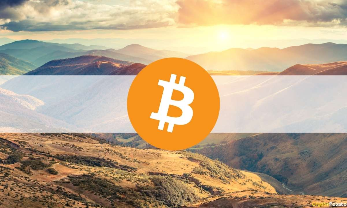 Bitcoin Spiked to a 26-Day High Above $41,000 (Market Watch)