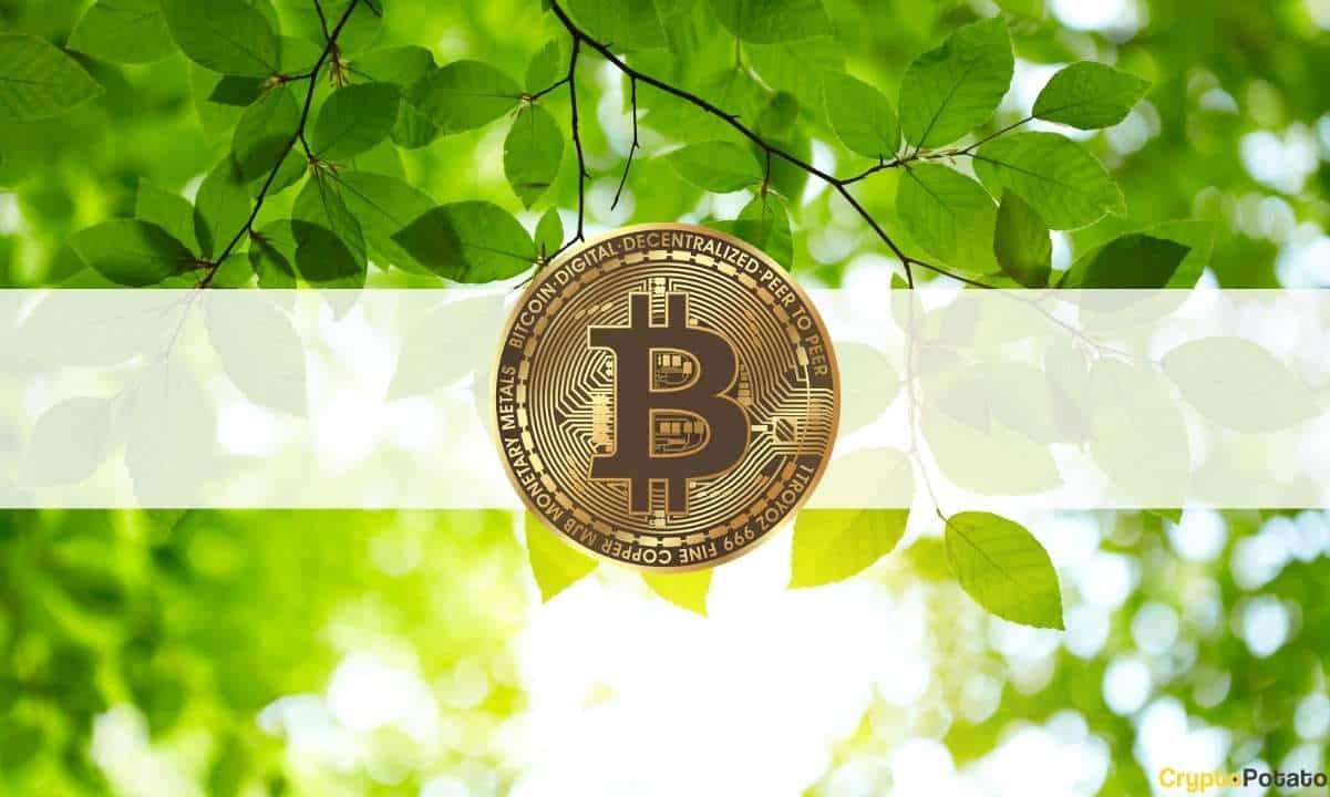 Crypto Market Cap Recovers $200B as Bitcoin Tops $57,000 (Market Watch)