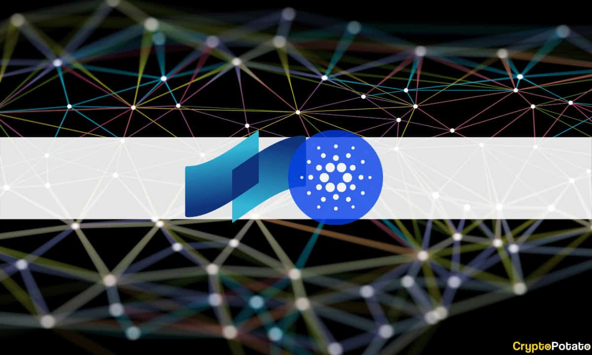 COTI Receives Investment From Cardano's Venture Fund