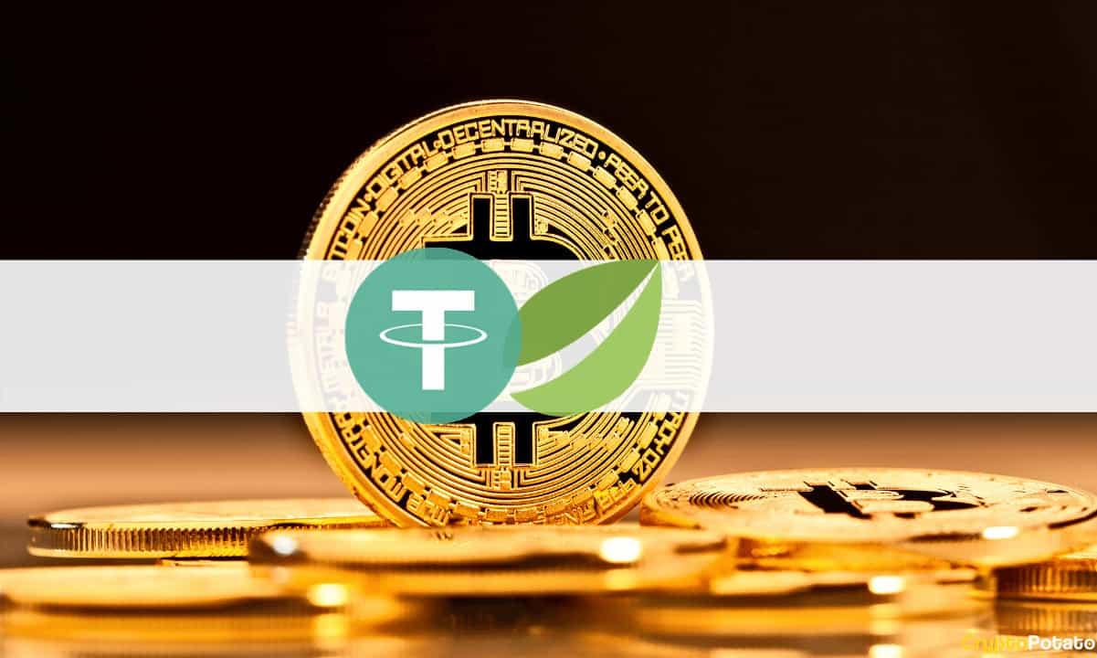 bitfinex depunere bitcoin gold exchange btc la pm
