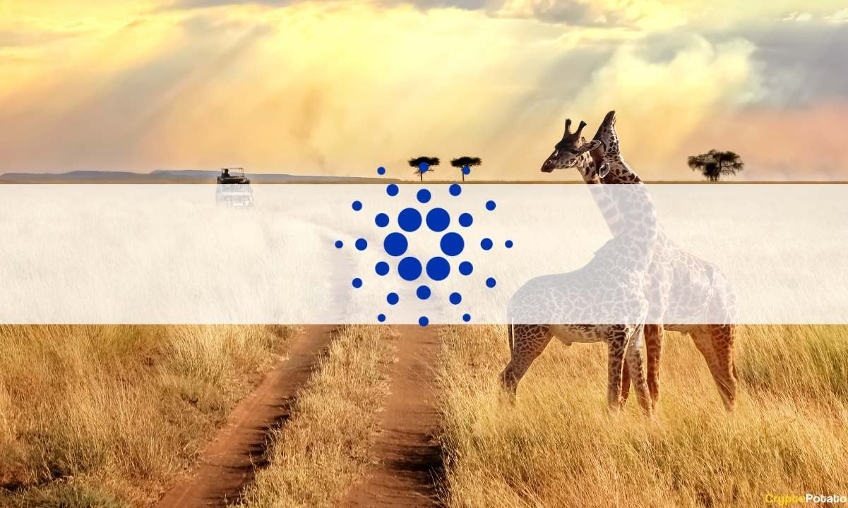 Cardano's IOHK Partnered with EBU to Make Education in Africa More Accessible