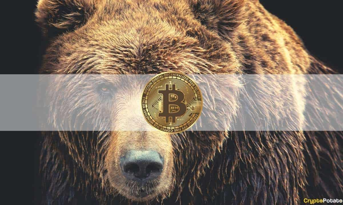 Bitcoin Bear Market Fears Sparked by Institutional Outflows and Whale Capitulation
