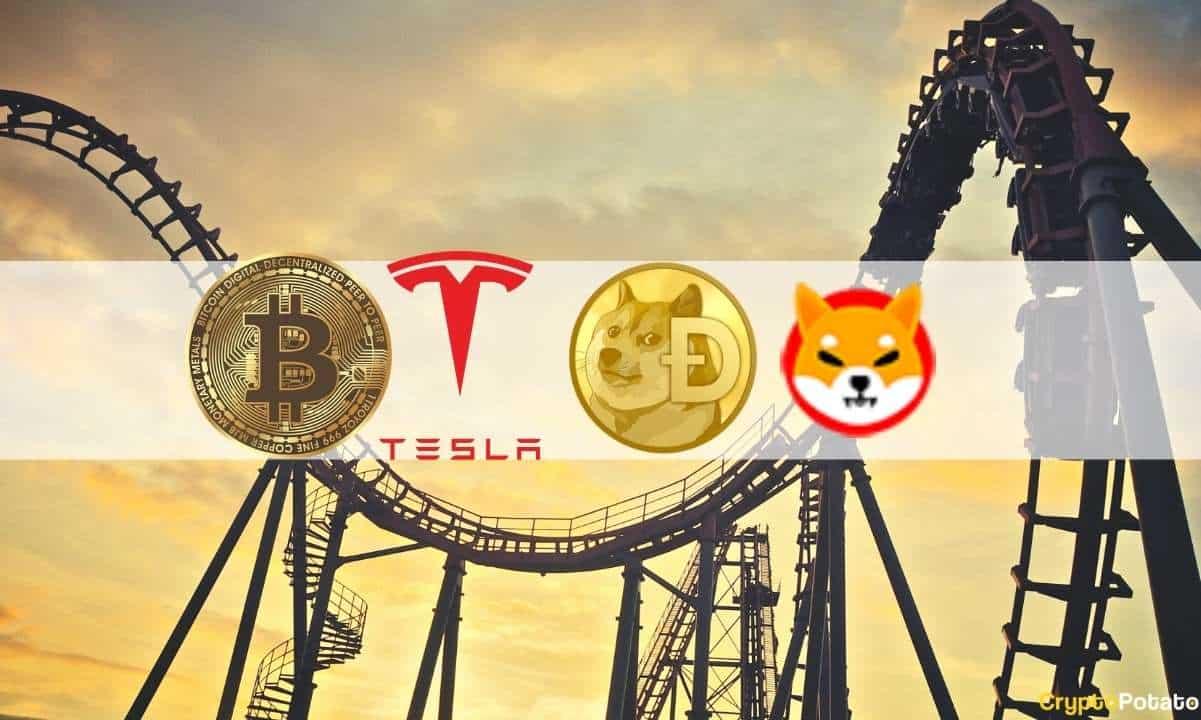 Shiba Inu (SHIB) Mania, Dogecoin, Tesla's Bitcoin Halt and Crypto Market Volatility: The Weekly Recap