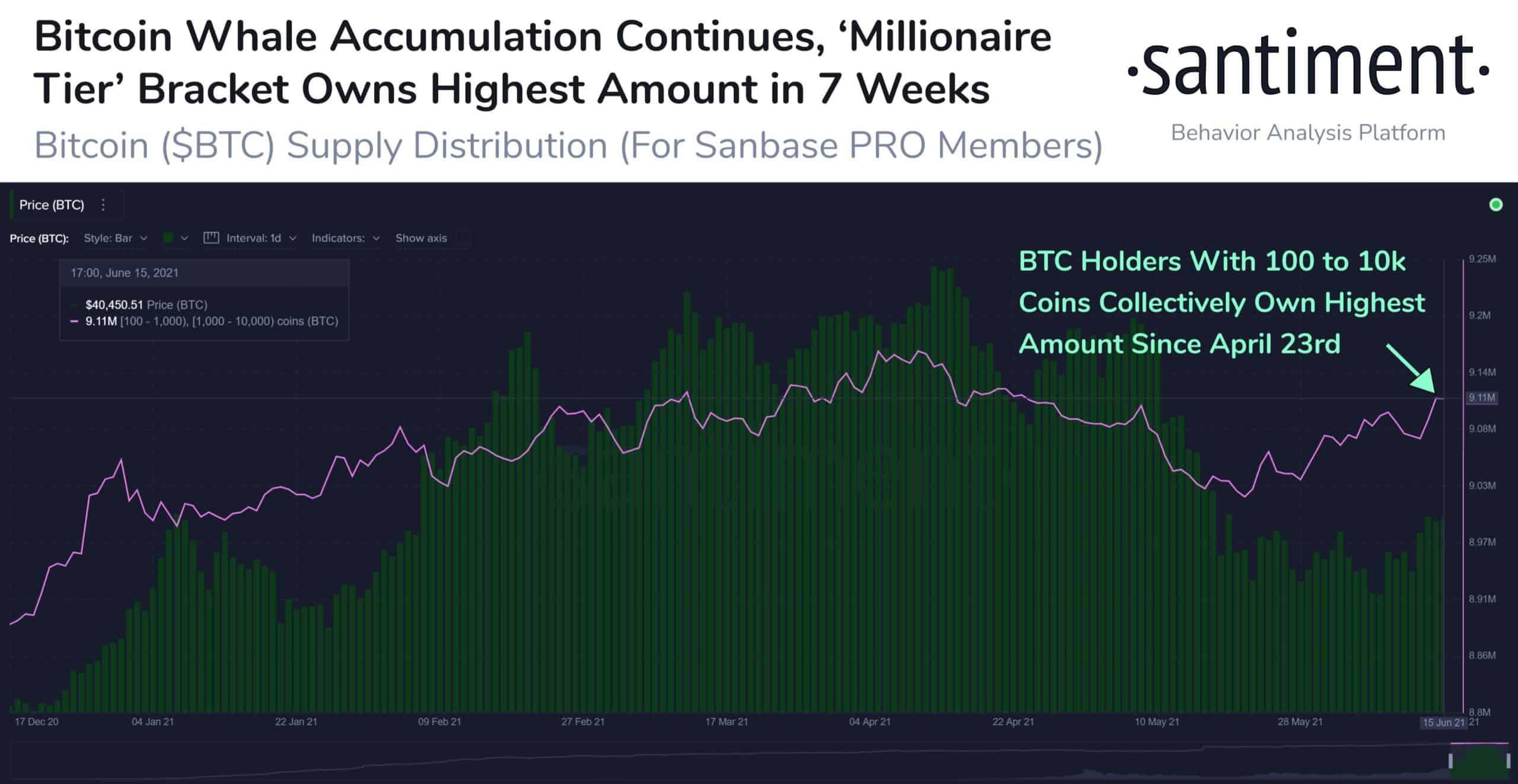 Bitcoin Whales' Behavior. Source: Santiment