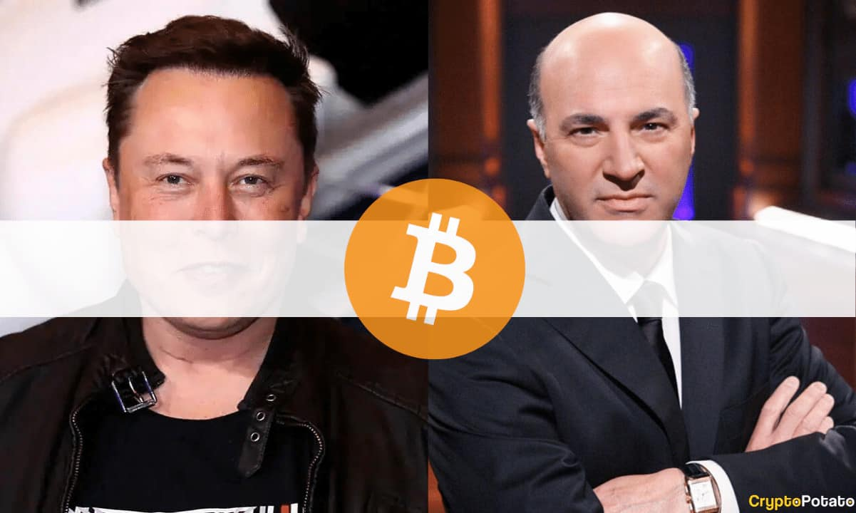 Elon Musk Was Pressured by Tesla's Shareholders to Drop Bitcoin Payments, Says Kevin O'Leary