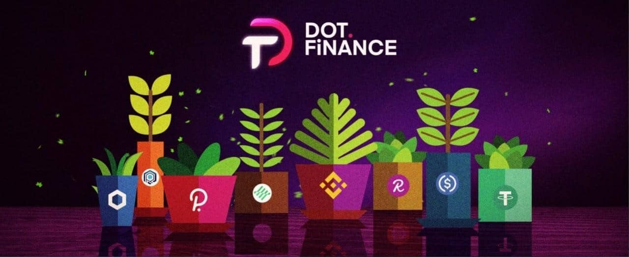 DotFinance Gets Listed On MXC As Team Announces New Maximizers And Staking Pool