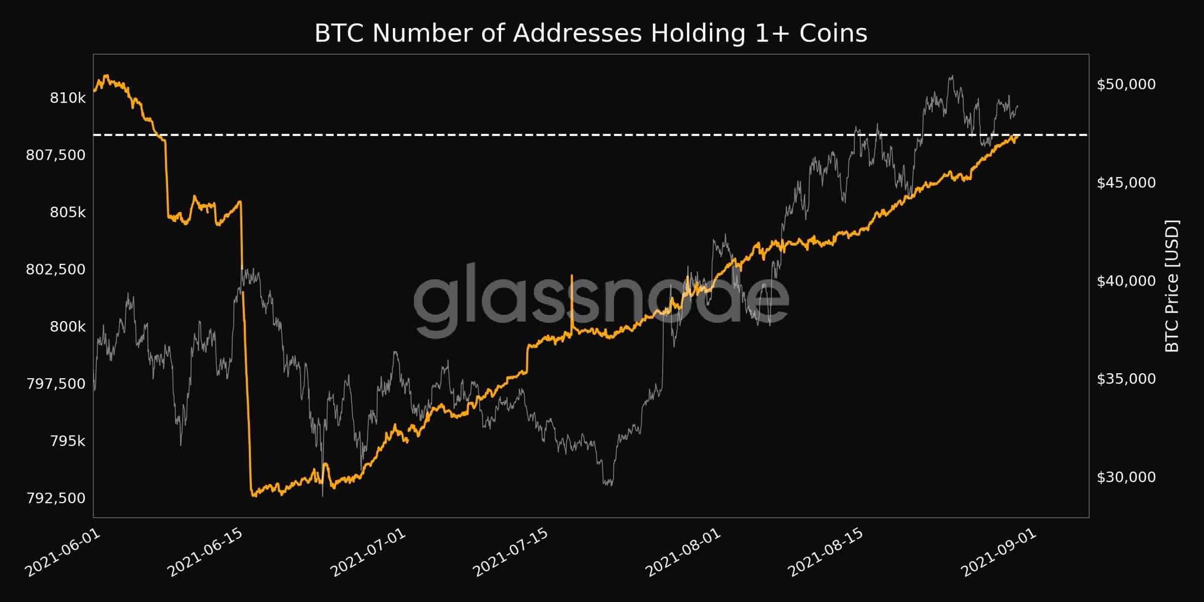 Bitcoin Wholecoiners. Source: Glassnode