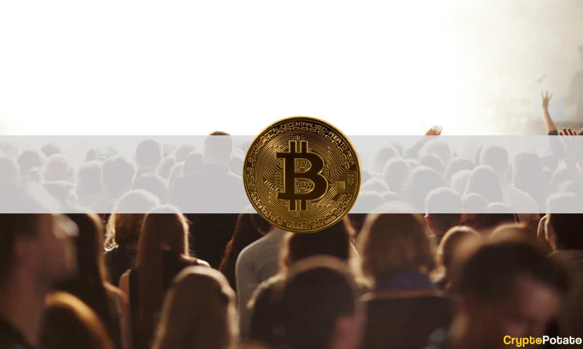 Millennials, Xennials, or Generation X: Which Group Is the Most into Crypto? (Survey)