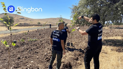 Bingbon Launches its Carbon Free and Afforestation Project to Help Curb Climate Change Hazards