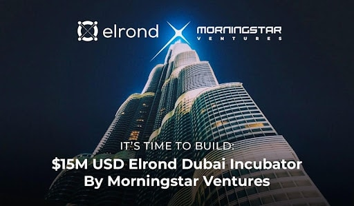 Morningstar Ventures Invests $15M In Projects Building on Elrond Network