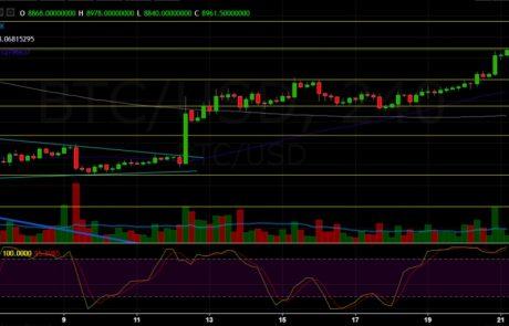 Bitcoin Price Analysis April.21