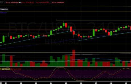 Bitcoin Price Analysis April.30