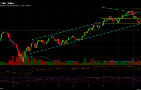 Bitcoin Chart Analysis Feb.22