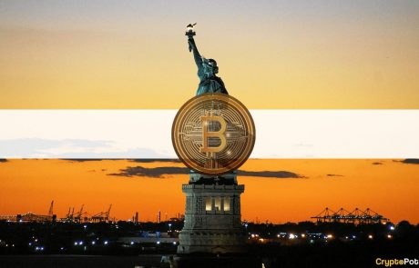 One in Every Four Americans in Favor of Legalizing Bitcoin in the US: Survey