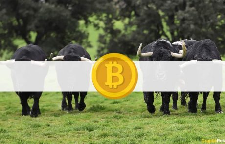 2 Reasons Bitcoin Price Might Be In for More Gains: Analysis