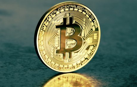 Bitcoin Is a Hedge and its Volatility Attracts Investors, Says SEEK Co-Founder