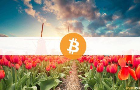Pieter Hasekamp: Países Bajos Debe Prohibir Bitcoin