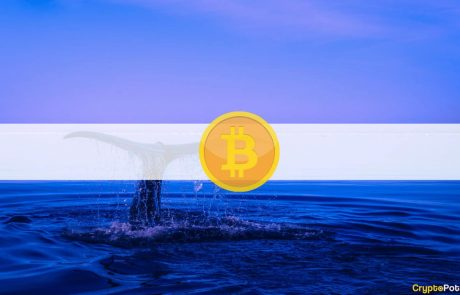 Accumulation Resumes: After Short Break, Third Largest Bitcoin Whale Buys $24M Worth of BTC
